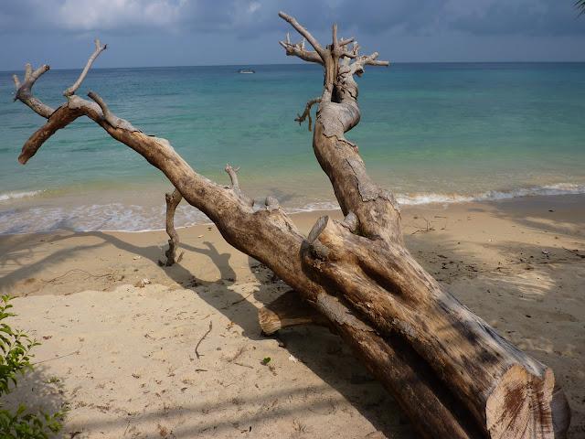 Blog de voyage-en-famille : Voyages en famille, ABC, Tekek juste pour voir