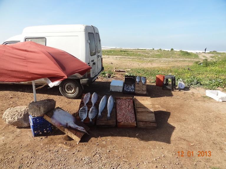 marrocos - Marrocos e Mauritãnia a Queimar Pneu e Gasolina DSC05410
