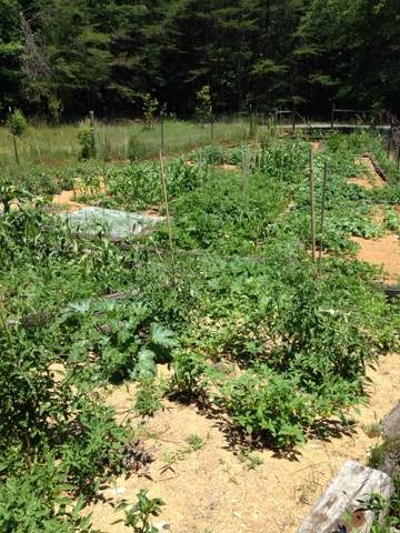 blessed farm partnership Our retreat setting is the blessed maine herb farm  harvesting and making medicine can be a partnership  our schedule for the 2018 community herbalist retreat.