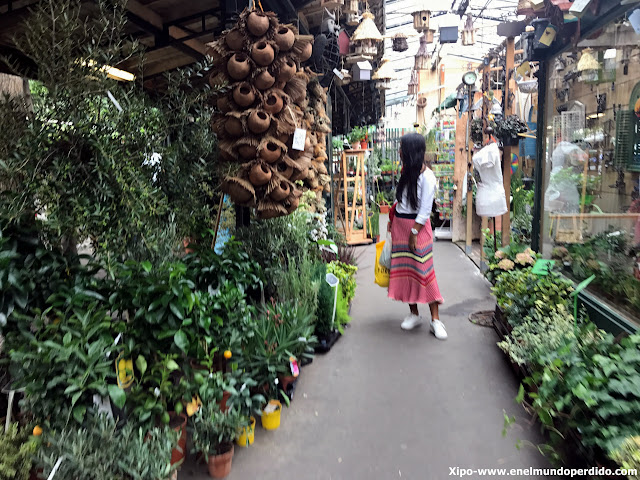 mercadfo-flores-paris.JPG