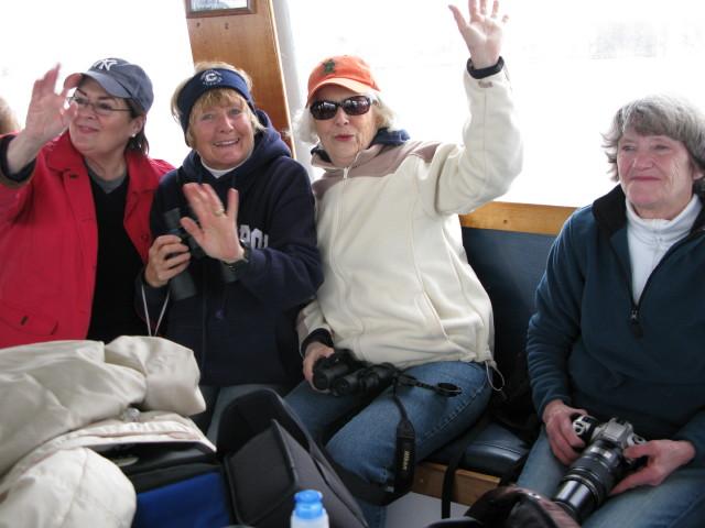 Seal Cruise - seal10.jpg