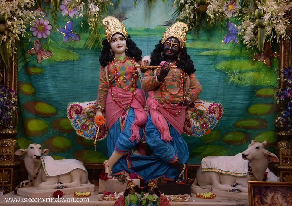 ISKCON Vrindavan Mangal Deity Darshan 27 Feb 2016 (2)