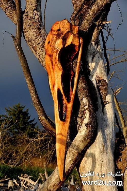 ابداعات من الأخشاب للفنان Jeffro Uitto