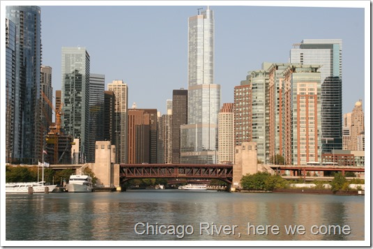 Chicago (37)