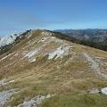 Ljubičko brdo