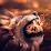 Ego Nas's profile photo