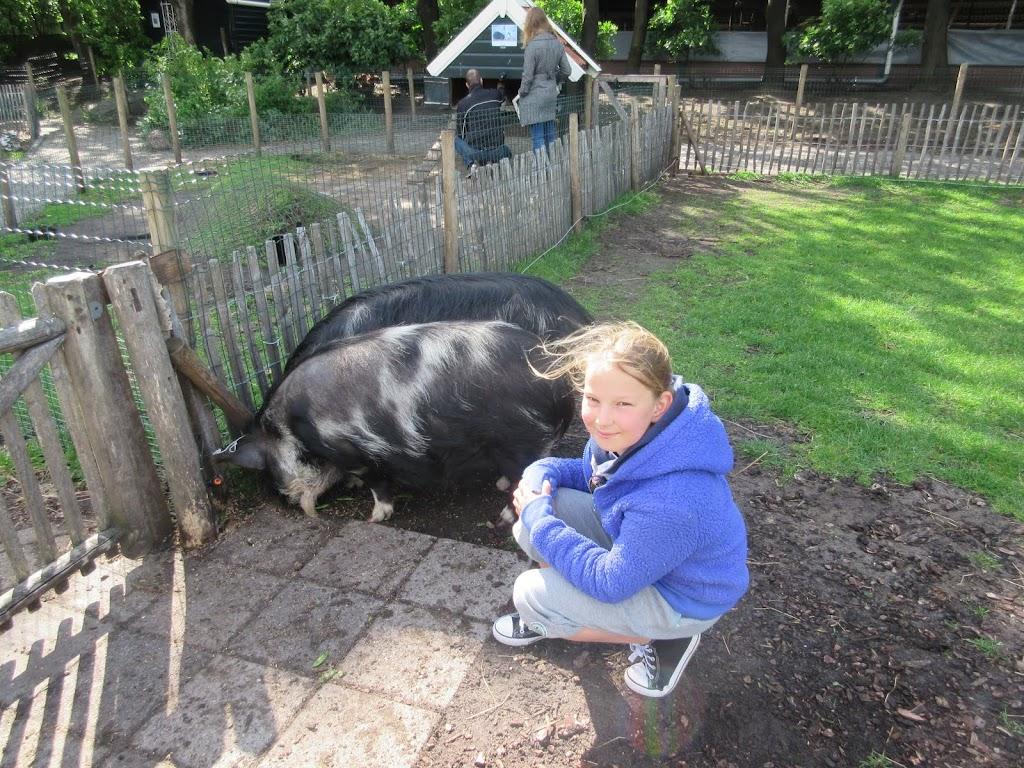 Welpen - Kinderboerderij & Crossbaan - IMG_2488.JPG