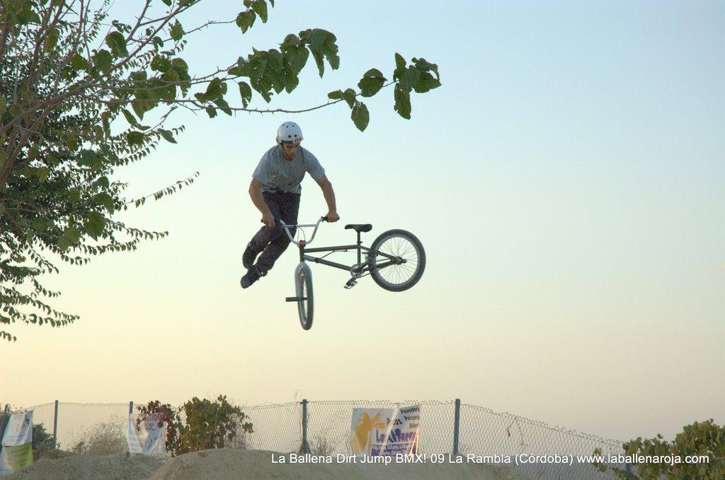 Ballena Dirt Jump BMX 2009 - BMX_09_0156.jpg