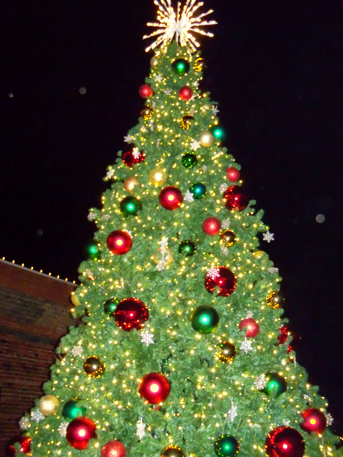 Christmastime - 116_6399.JPG