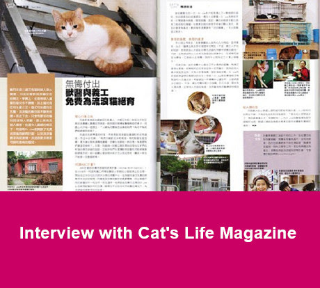 interview with cat's life magazine
