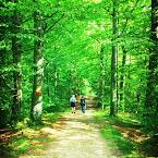 20120819-01-elena-irina-forest.jpg