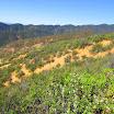 san-juan-trail-IMG_0295.jpg