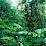 Fundación Colombia Tropical's profile photo