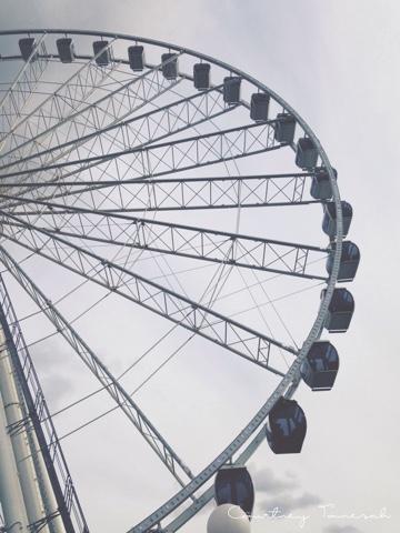 Courtney Tomesch Seattle Great Wheel