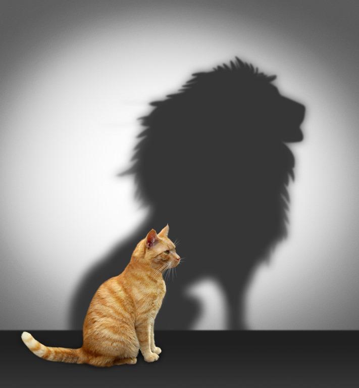 [lion%5B4%5D]