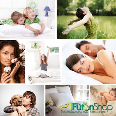 http://www.thefutonshop.com/Organic-Dog-Beds/sc/710/597