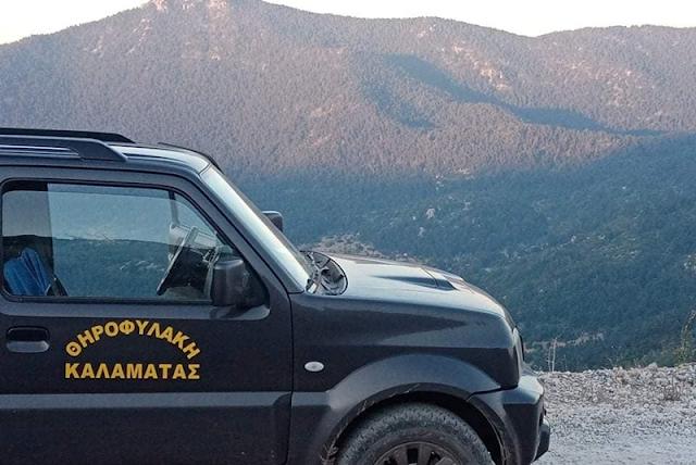 Νυχθημερόν περιπολεί ο Κυνηγετικός Σύλλογος Καλαμάτας για πρόληψη πυρκαγιάς