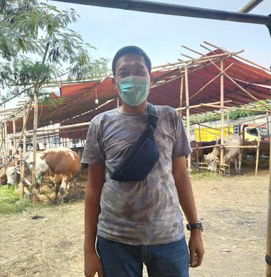 Sapi Bali Masih Jadi Hewan Kurban Favorit Warga