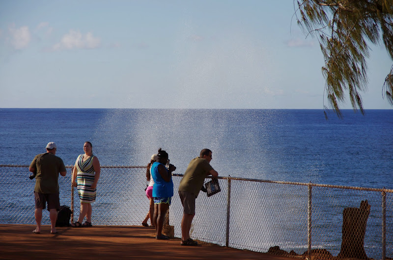 06-27-13 Spouting Horn & Kauai South Shore - IMGP9763.JPG