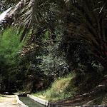 Tozeur et Nefta (Tunisie)