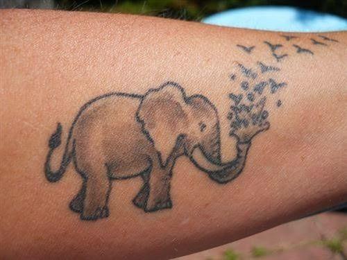 elefante_tatuagens_63