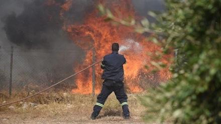 Φωτιά τώρα στις Ερυθρές Αττικής