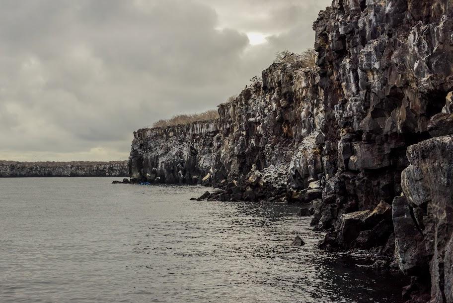 galapagos - Galapagos_FB_2-7.jpg