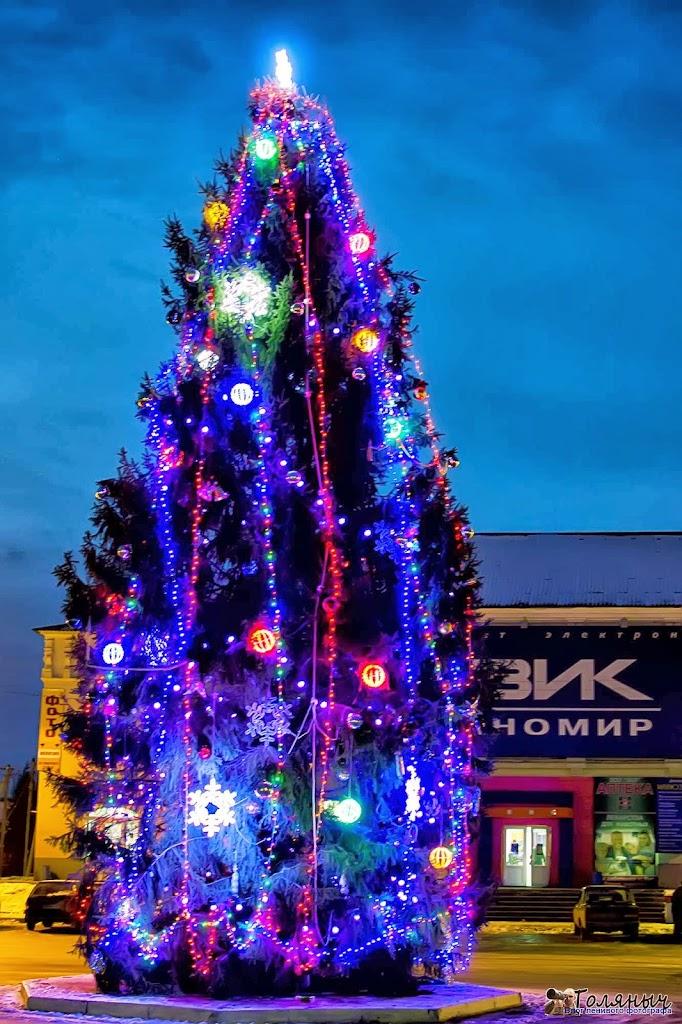 20 декабря 2012 года - главная елка города