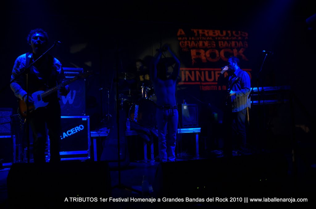 A TRIBUTOS 1er Festival Homenaje a Grandes Bandas del Rock 2010 - DSC_0027.jpg