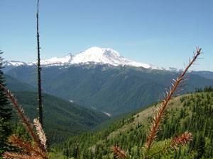 Photo of Mount Rainer taken on Trail #1184 to Noble Knob on July 9, 2006. Photo by Nick Peyton.