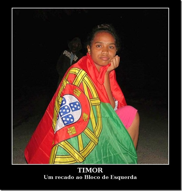 timor-moti-web