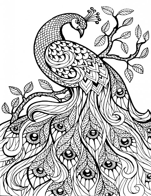 Adult Coloring Pages Animals With Adults Pages