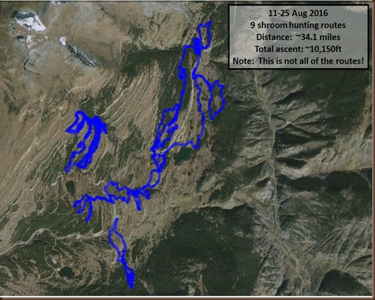 Silverton-11-25 Aug-shroom routes