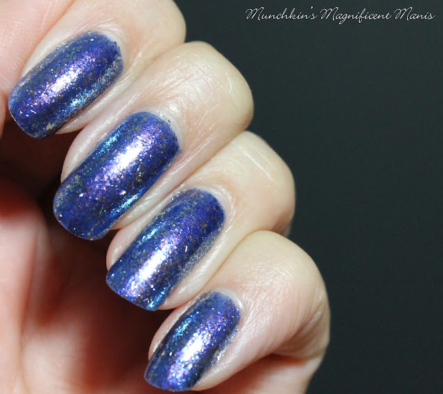 Holo Taco- Frosted Metals- cold shoulder