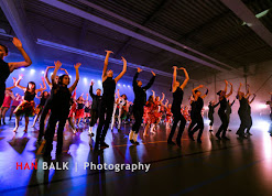 Han Balk Voorster Dansdag 2016-4811.jpg
