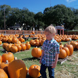Pumpkin Patch 2015 - 100_0397.JPG