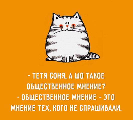 27749764_1275160229252488_9129435418842274398_n