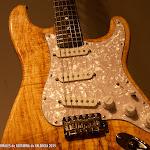 145: Luthier Francisco Vico Molina