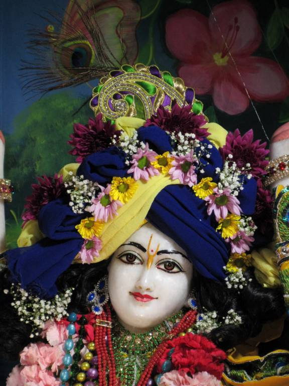 ISKCON Chicago Deity Darshan 11 Feb 2016 (9)
