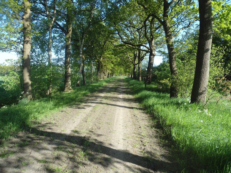 Kennedymars Odoorn (80km ou plus) ; NL; 8-9 mai 2013 DSC02255