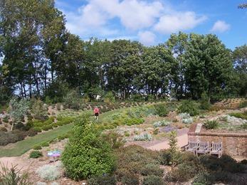 2010.08.13-046 jardin austral