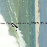 _DSC9895.thumb.jpg