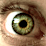 Dustin Solomon's profile photo