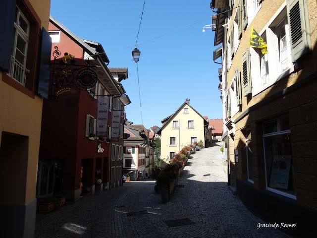 passeando - Passeando pela Suíça - 2012 - Página 14 DSC04895