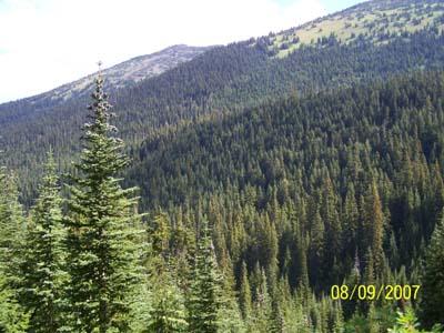 North Cascades/Jack Mt--Aug 2007 - JackScene16.jpg