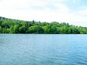 Kronenburger See im Sommer