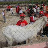 """Granja Escuela """"El Solet"""" 3 y 4 años"""