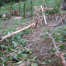 Vodov izlet, Ilirska Bistrica 2005 - Picture%2B266.jpg