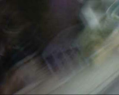 VORSTAND – Pfälzischer Verband für Soziale Rechtspflege, Vorsitzender Richter am Landgericht Landau, Kuhs, Helmut Kuhs Kolmarer Straße 76829 Landau, Achteinhalb Jahre Haft für den Mörder eines …, Landau – Deutscher Richterbund, Landesverband, Kontakt Pfälzischer Verein für Soziale Rechtspflege, Winzer-Enkel erstochen, Richter Kuhs