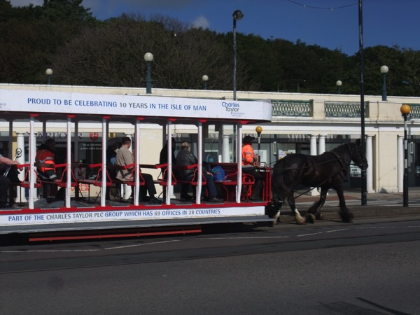 Horse Tram 1
